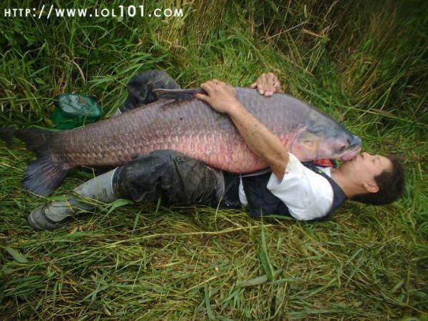big_fish_