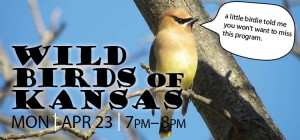 Come to Wild Birds of Kansas April 23 at the library