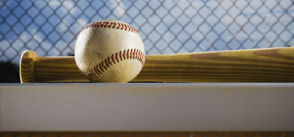 baseball & bat - resized