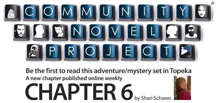 chapter 6 shari schawo