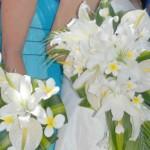 flower3new