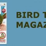 BIRD TALK MAGAZINE 2