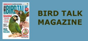 BIRD TALK MAGAZINE 2
