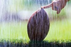 Kickoff in Rain