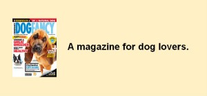 dog fancy blog1