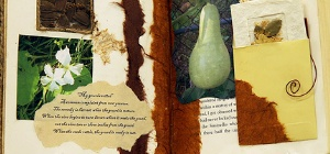 featured image gourd
