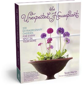 unexpected houseplant book