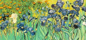Vincent Van Gogh: Irises, 1889