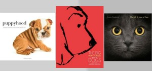photographs and stories dogs and cats
