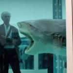 sharkmichael