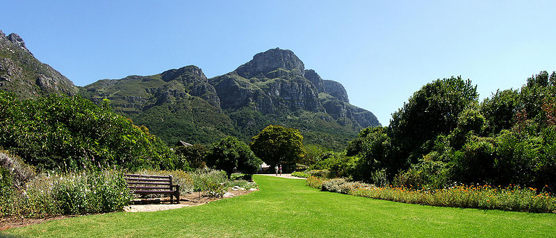 Kirstenbosch National Botanical Gardens