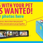 TravelPetPicWebFeature