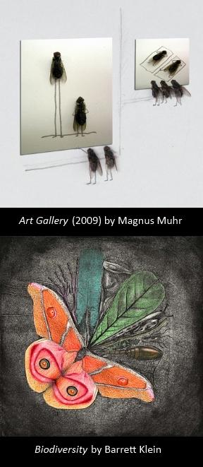 bug artist composite 2