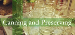 Canning Preserving 600 280