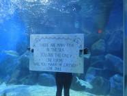 Proposal-Underwater