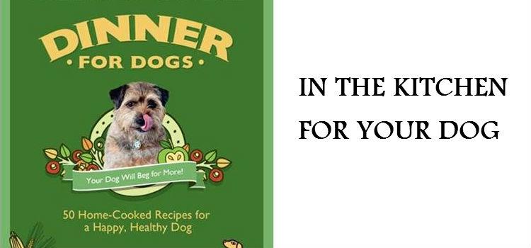 MAKE FOOD FOR YOUR DOG