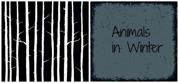 animalsinwinter
