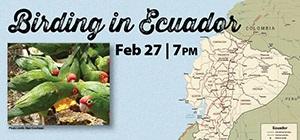 BirdingEcuador_webgraphic