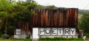 Poetry Thumbnail