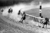 Citation at the Belmont Stakes