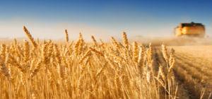 Good Land: My Life as a Farm Boy