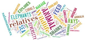 Word Cloud of Animal Names