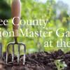 Master Gardner blog image