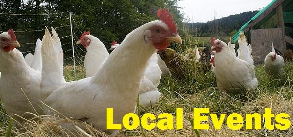 chicken local events