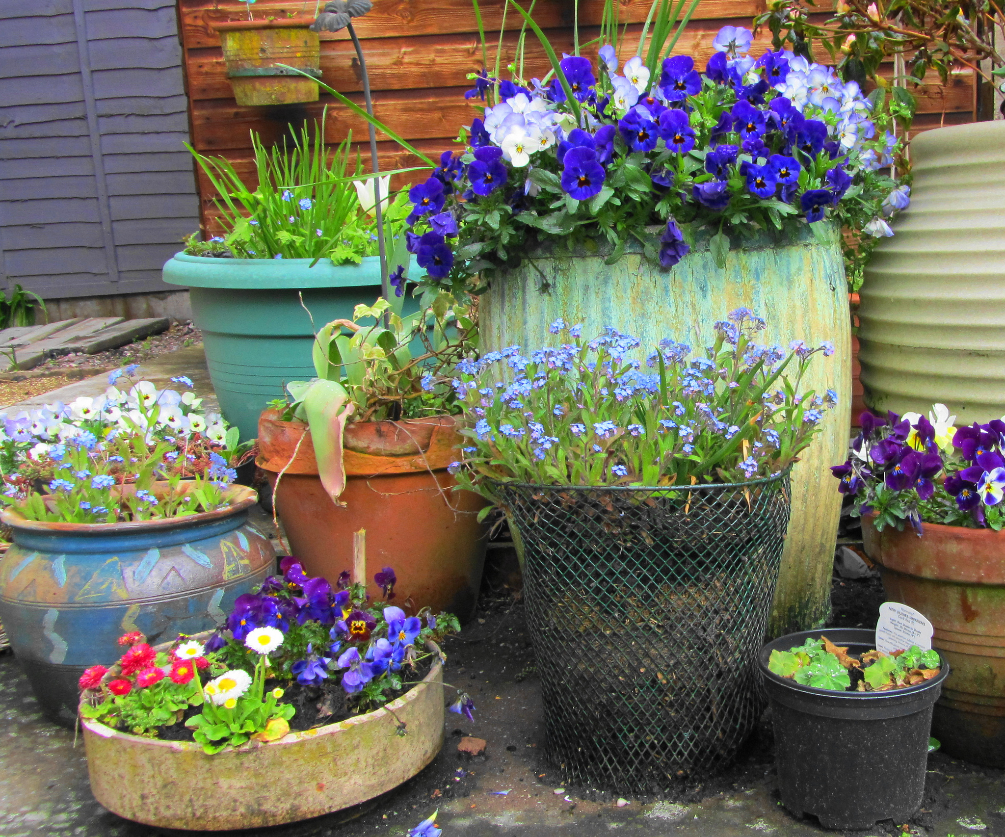 Grow A Beautiful Garden – In Containers!