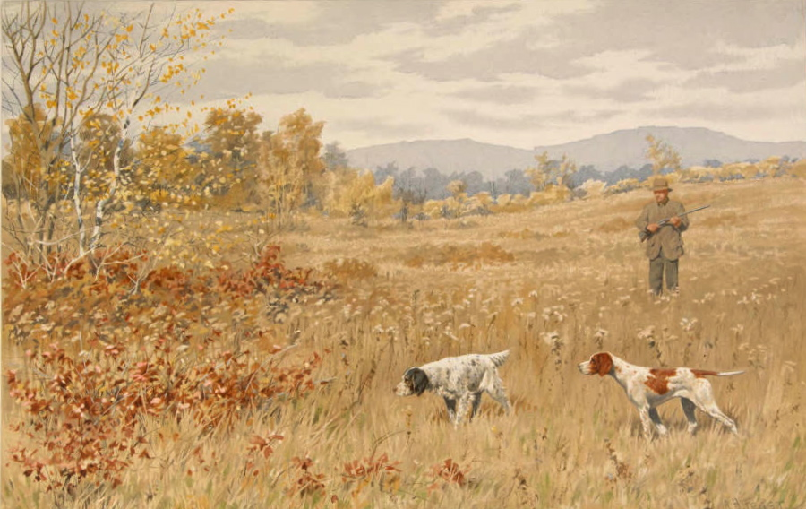 https://commons.wikimedia.org/wiki/File:Quail-A_Dead_Stand,_by_A_B_Frost_from_Shooting_Pictures,_by_Scribner_%26_Sons,_1895.jpeg
