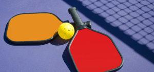 Pickleball paddles and ball