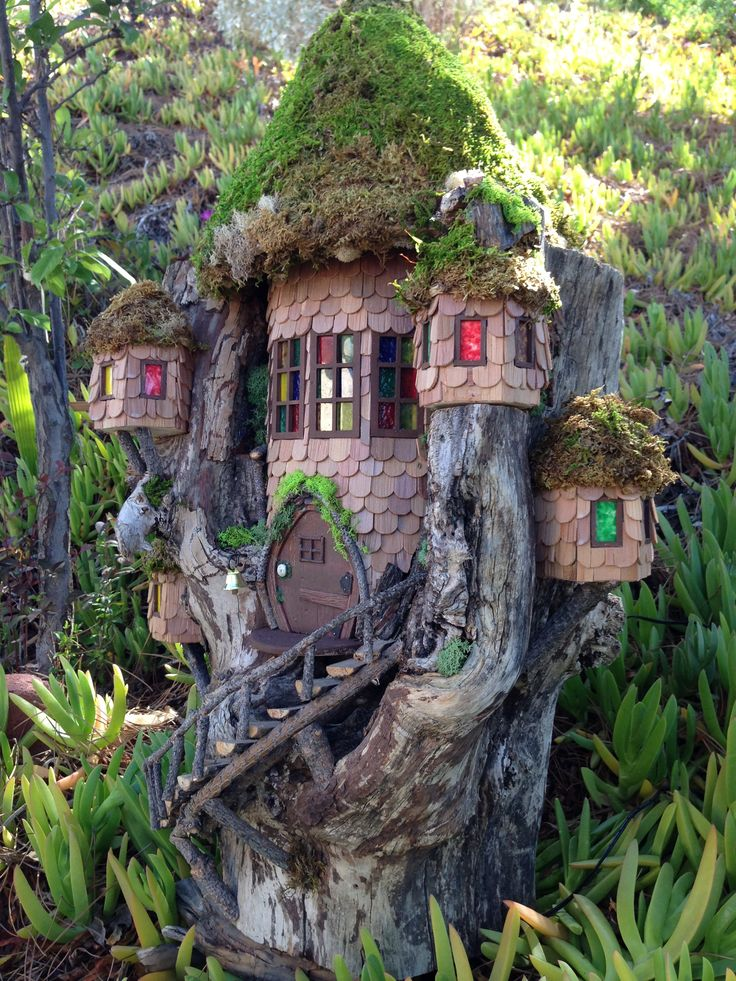 fairy house built into a tree stump