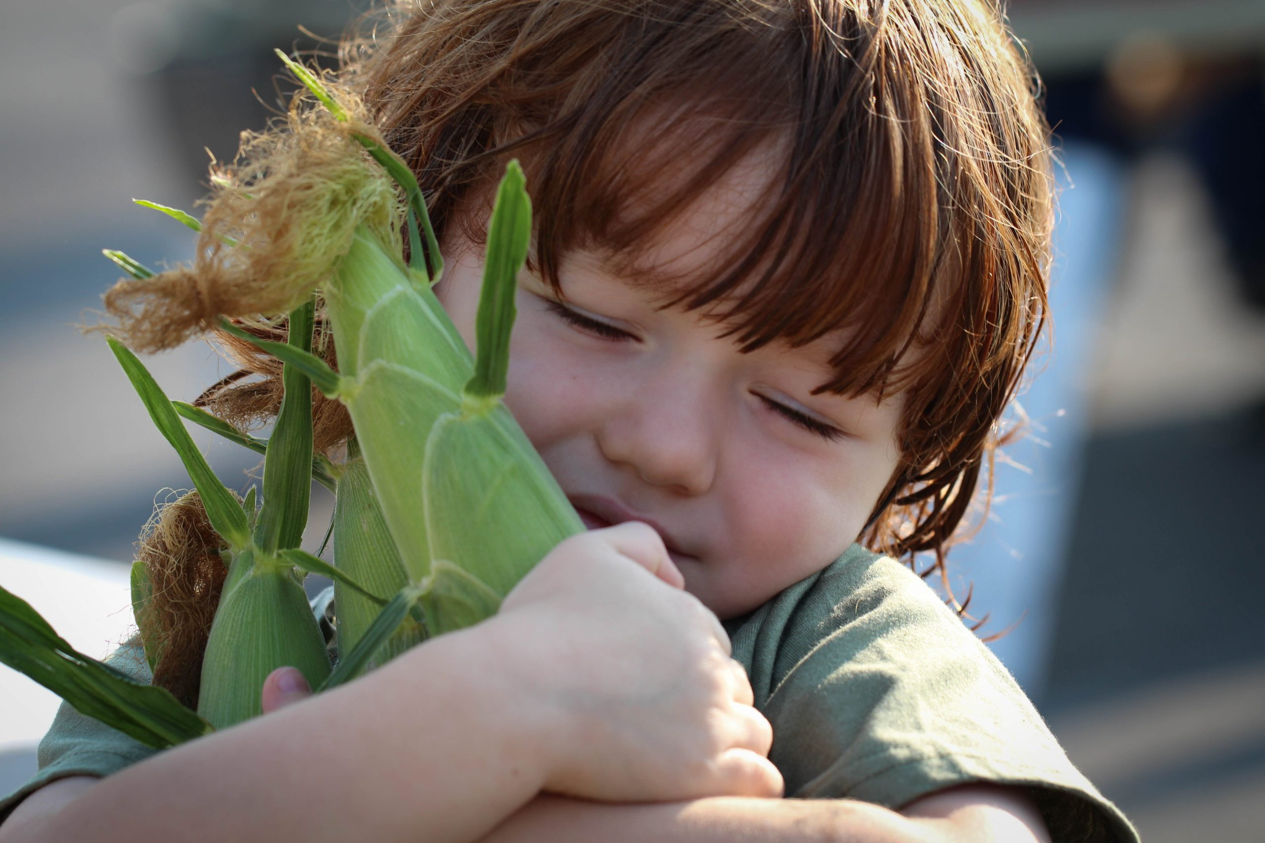 boy hugging corn