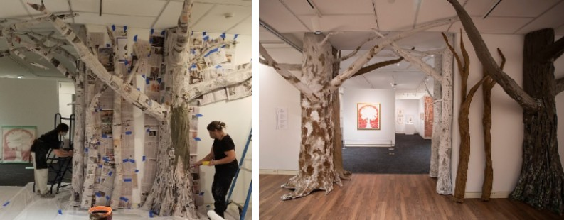 gallery trees before and after