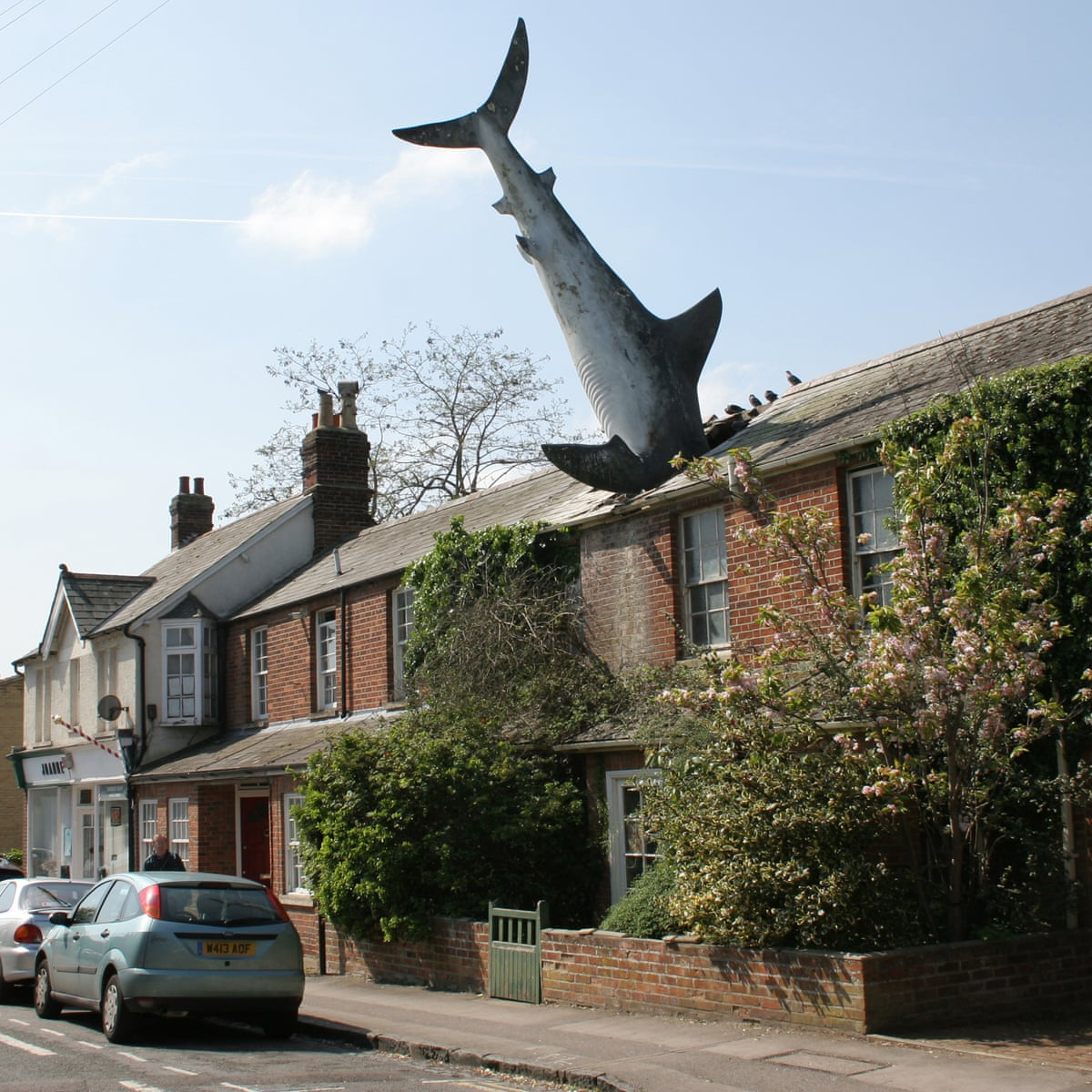 A house in a row of several on the street has a shark's head crashed through its roof. The body of the shark is stiff and suspended on top of the house.