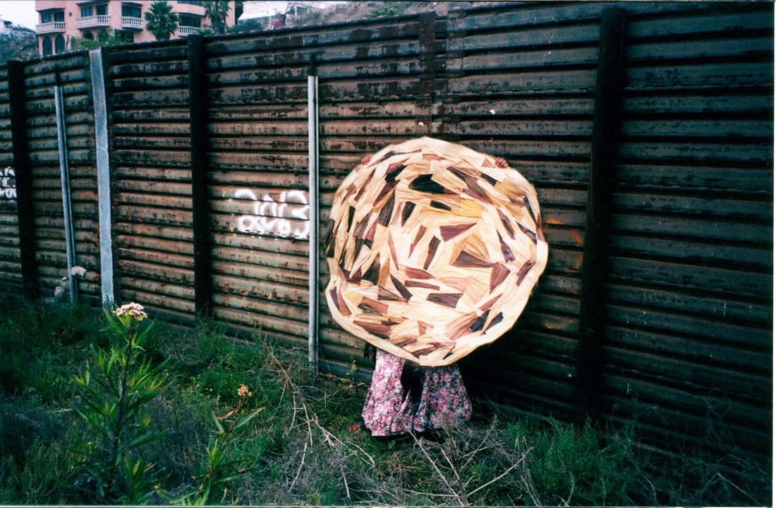 Tortilla Meets Wall