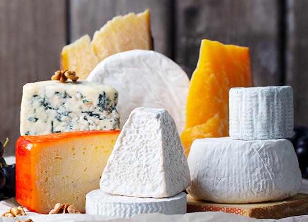 Cheese assortment: blue cheese, hard cheese, soft cheese