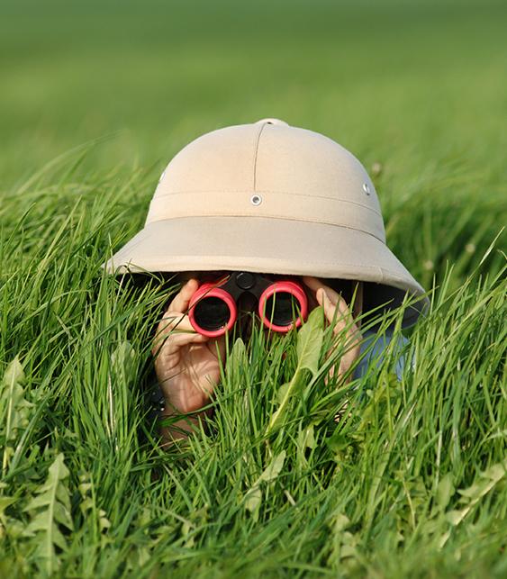 Explorer in the field
