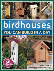 birdhouses you can build in a day book cover