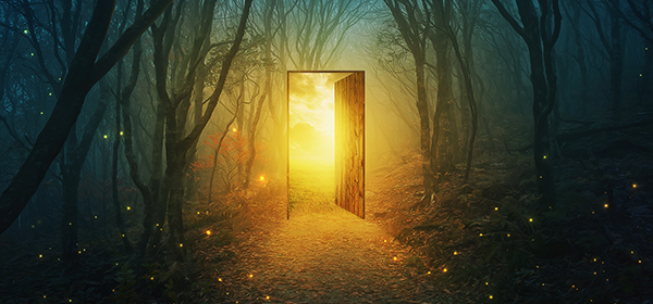 A magical door in the forest with bright glowing lights.