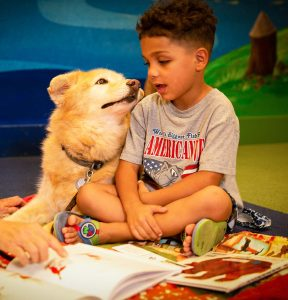Therapy dog Waverly listens to Isiah reading